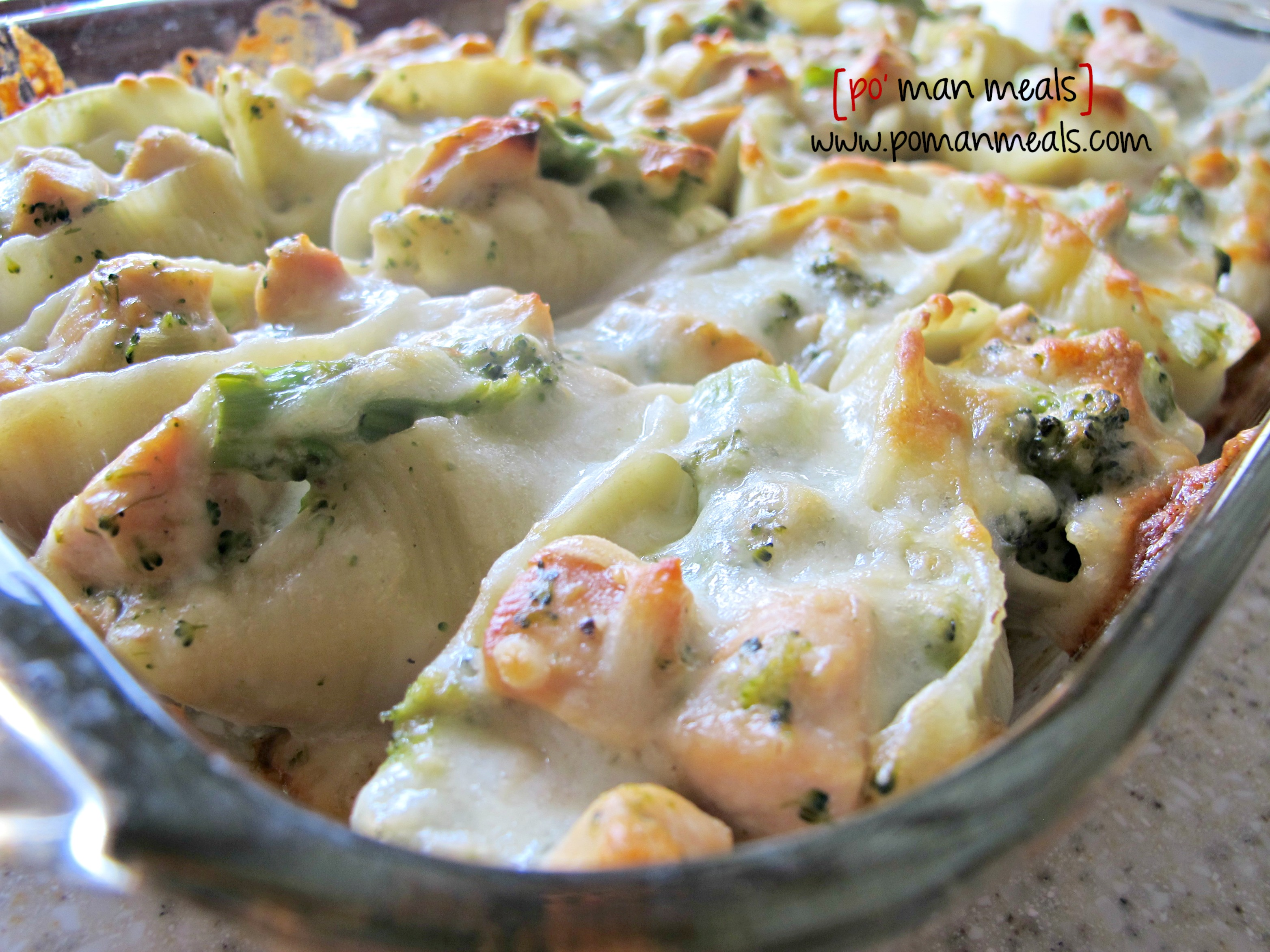 po' man meals - chicken and broccoli stuffed shells